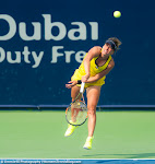 Barbora Strycova - 2016 Dubai Duty Free Tennis Championships -DSC_4786.jpg