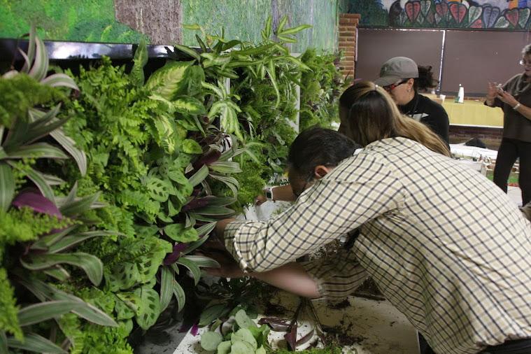 Curso de jardines verticales en Colombia