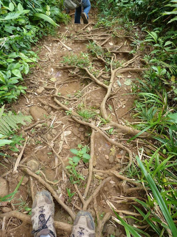 TAIWAN Ile de Lanyu - P1010412.JPG