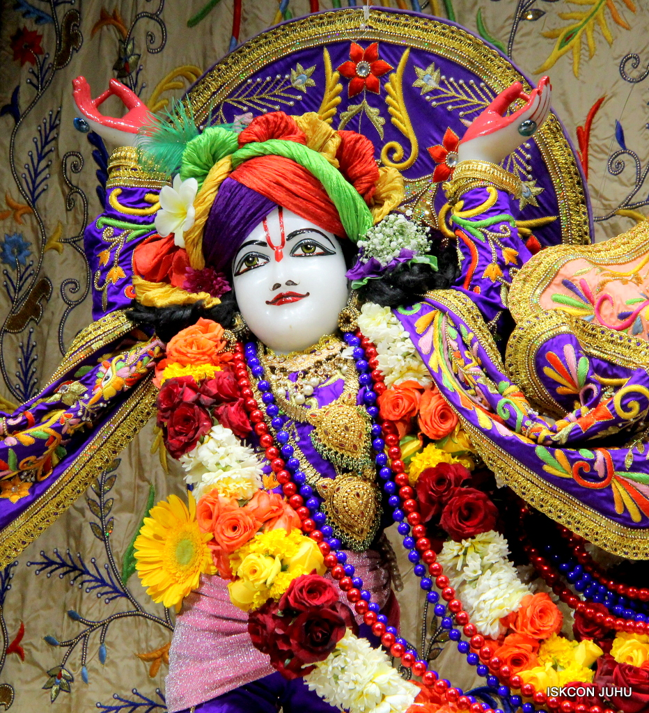 ISKCON Juhu Sringar Deity Drashan on 17th Jan 2017 (12)