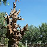 Houston Zoo - 116_8450.JPG