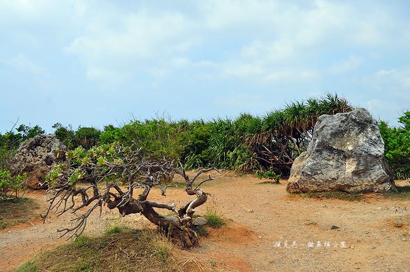 貓鼻頭公園珊瑚礁岩