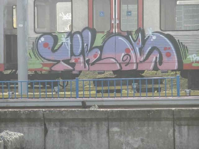 DSCN9031