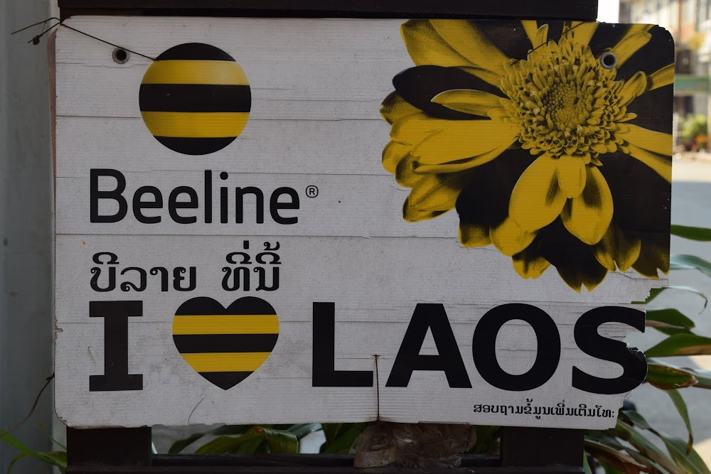 More Beeline signs!!!  Reminds me of Russia!