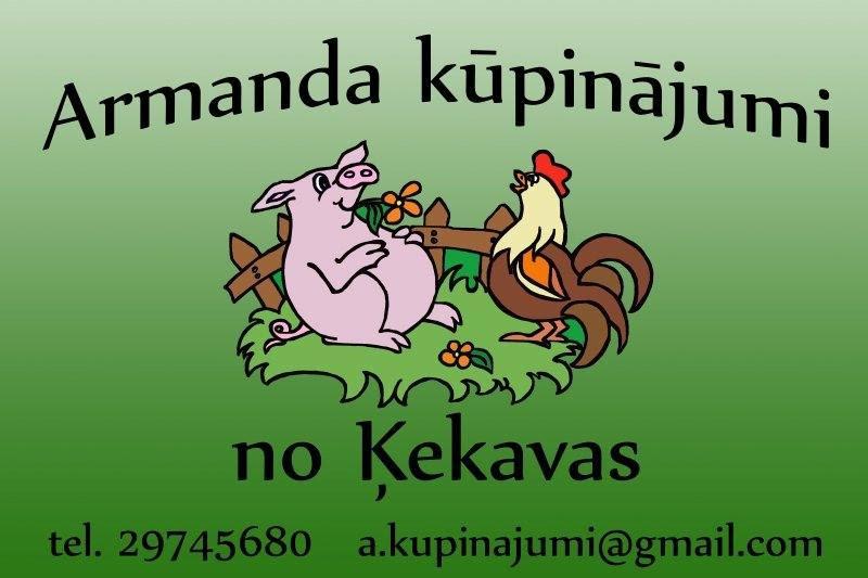 http://www.zagata.lv/partika_zs/gala/armandakupinajumi