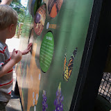 Houston Zoo - 116_8501.JPG