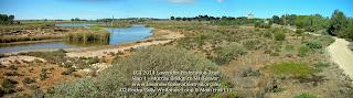 02 Rocky Gully Wetlands-Loop & Main trail (1)