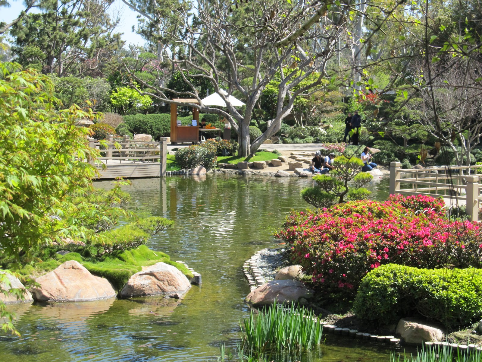 Earl burns miller japanese garden at cal state long beach - Japanese garden ...