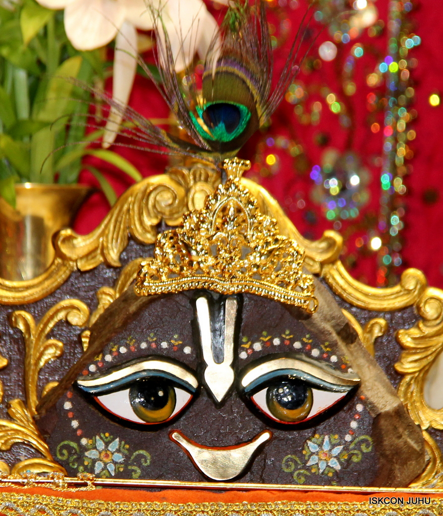 ISKCON Juhu Mangal Deity Darshan on 25th Oct 2016 (24)