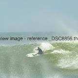 _DSC8856.thumb.jpg