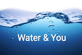 Water & You
