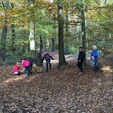 Groep 4 naar het bos