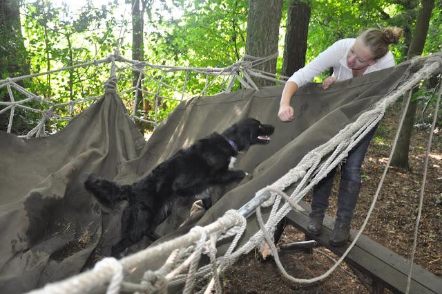 Survival voor Baas en Hond 2012 - DSC_0371.JPG