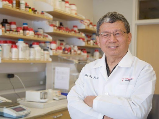 Scientists identify new gut-liver drug recycling process