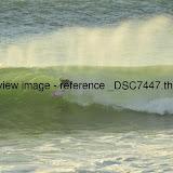 _DSC7447.thumb.jpg