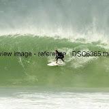 _DSC6365.thumb.jpg