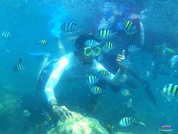 pulau harapan, 5-6 september 2015 skc 025