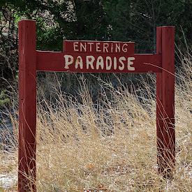 Portal & Paradise