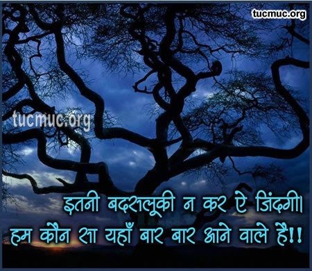 Shayari About Different aspect of Life  Images