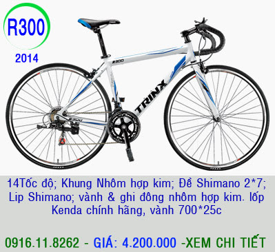 XE ĐẠP THỂ THAO, xe dap the thao, xe dap trinx, xe đạp thể thao chính hãng, xe dap asama,  R300