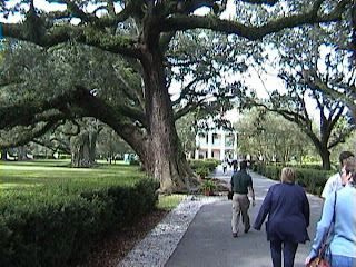 1000A_Southern_Mansion_Garden_-_New_Orleans