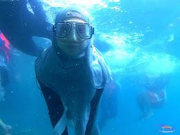 pulau pari 050516 GoPro 46
