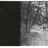 n029-001-1966-tabor-sikfokut.jpg