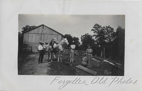 Horses and barnyard postcard Grand R Flea Mkt