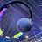 Riley Beck avatar image