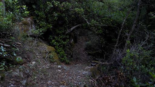 La suite du chemin RD de la Cavichja à explorer