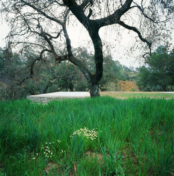 Casa en Sierra Norte de Sevilla - Felipe Palomino