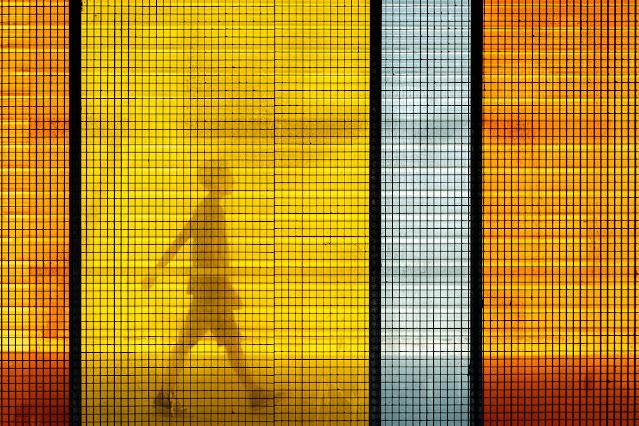 Armonía de color, foto de Carlos Larios
