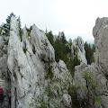 detalj s Vihoraškog planinarskog puta