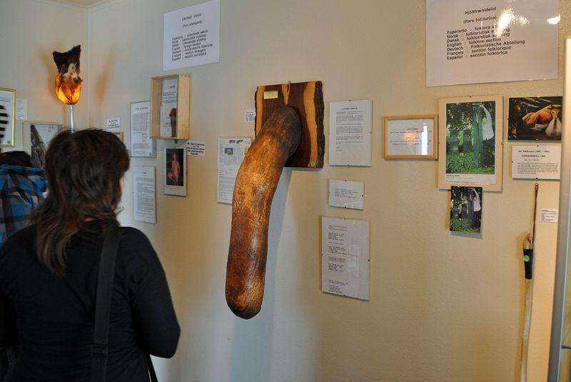 icelandic-phallological-museum-3
