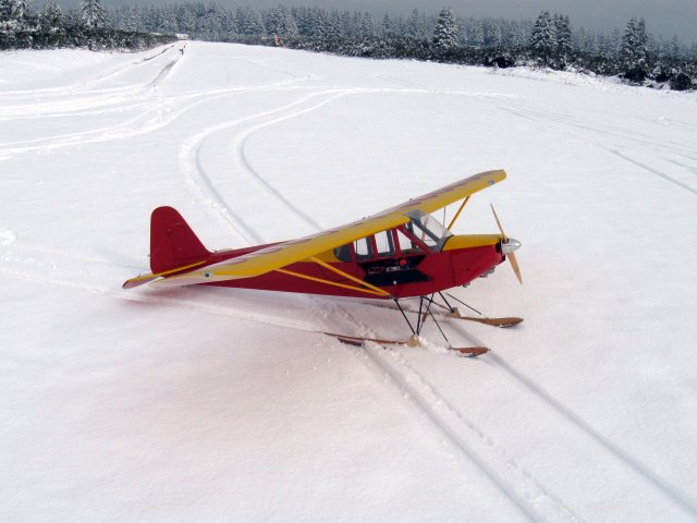 Mark Anderson's Cub - Snow 2012