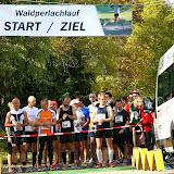2013_10_20_waldperlachlauf_081_1600.jpg