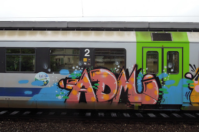 DSCN4277