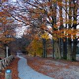 Herfst in Lemele 2014