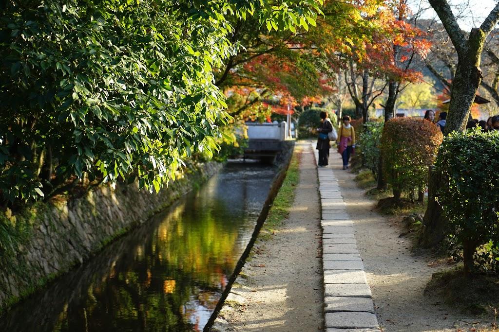 京都|哲学の道の紅葉