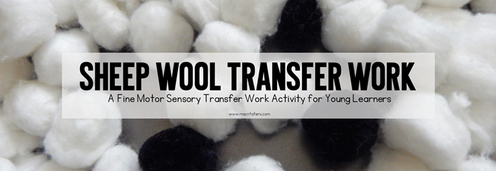 Montessori Inspired Sheep Wool Transfer Work Tray