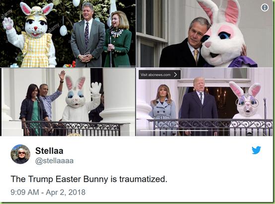 bunny shots