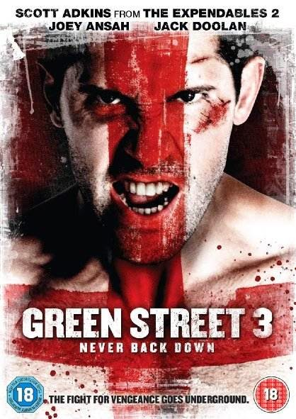 Poster Of Green Street 3: Never Back Down (2013) Full Movie Hindi Dubbed Free Download Watch Online At alldownloads4u.com