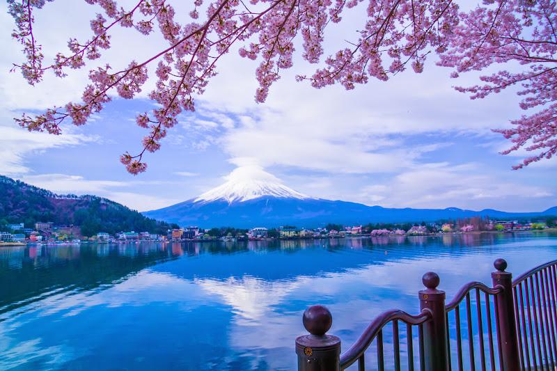 Lake kawaguchiko, cherry blossoms, Mt Fuji, Ubuyagasaki 6