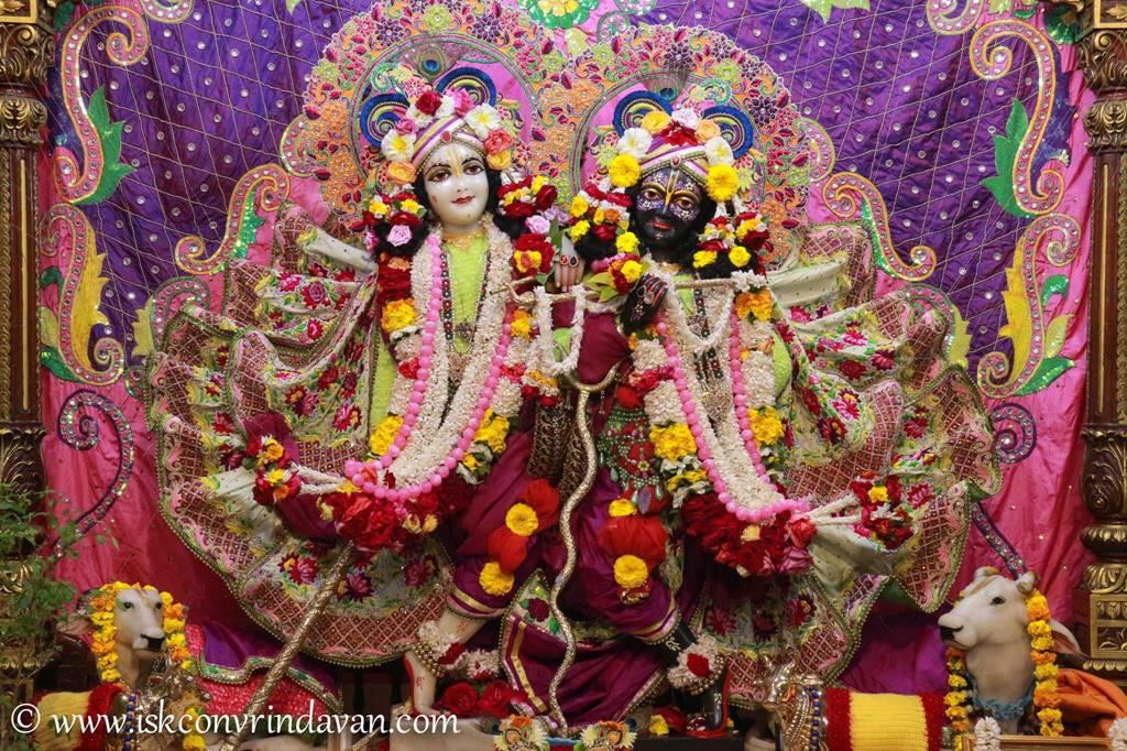 ISKCON Vrindavan Sringar Deity Darshan 14 Jan 2016 (19)