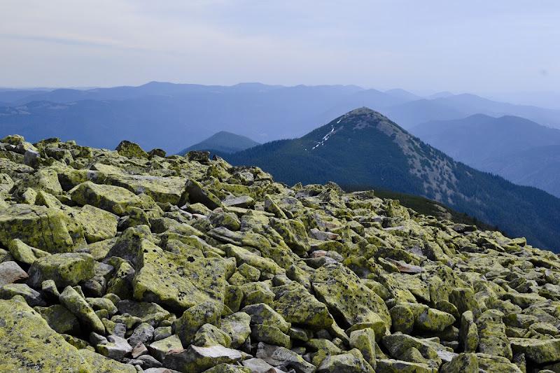 карпаты горганы панорама гора хомяк