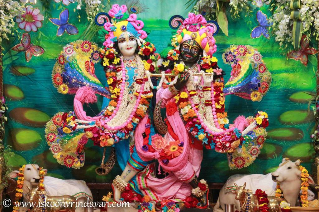 ISKCON Vrindavan Sringar Deity Darshan 26 Feb 2016 (9)