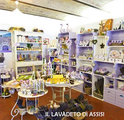 Assisi panorama da visitare