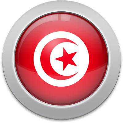 Tunisian flag icon with a silver frame