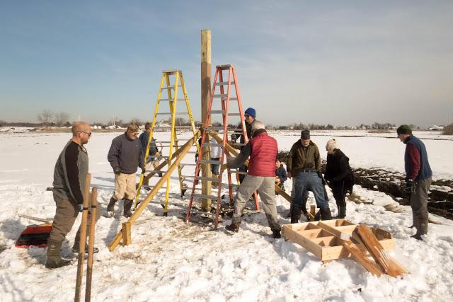 Osprey Platform, West River, Guilford, February 7, 2016 - wr12.jpg