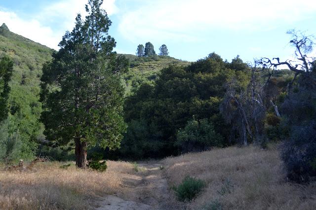 Atmore Meadows